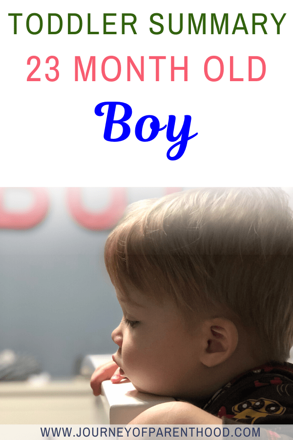 toddler summary 23 month old boy