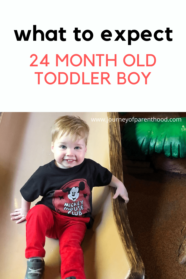 what to expect 24 month old toddler boy