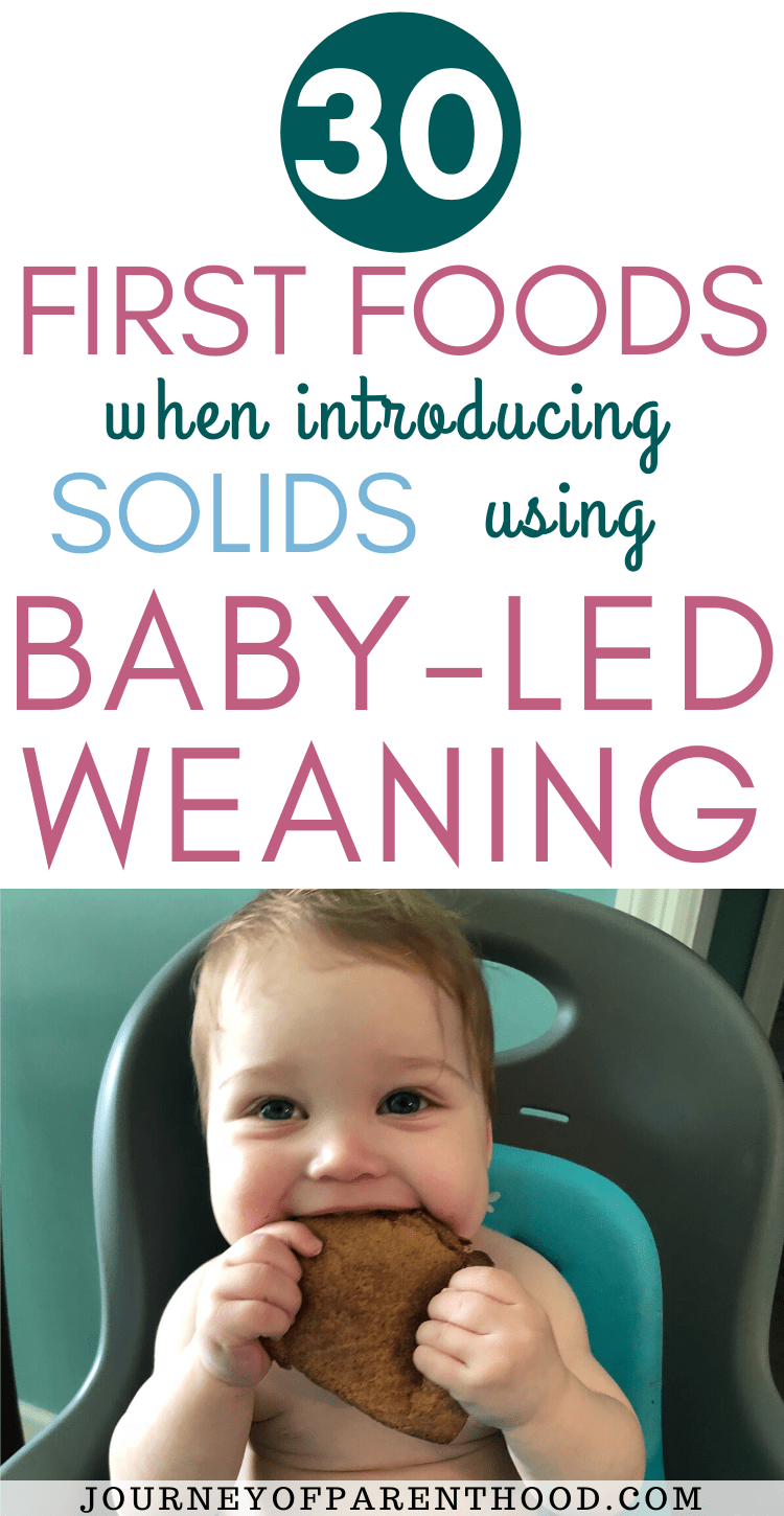 30 first foods when introducing solids using baby led weaning feeding method
