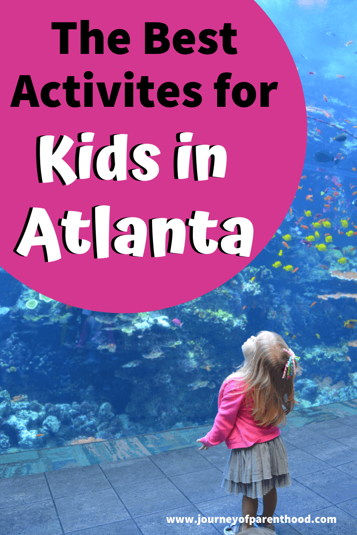 travel guide: atlanta attractions for families