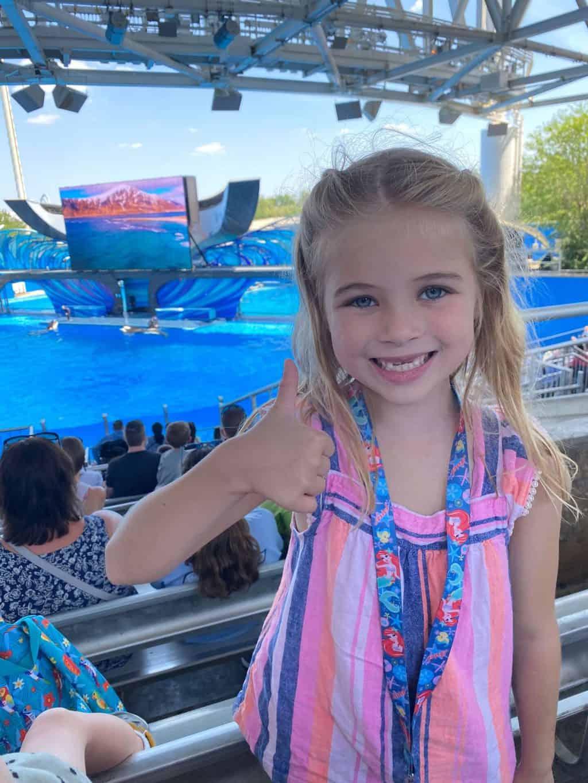 shows at SeaWorld Orlando