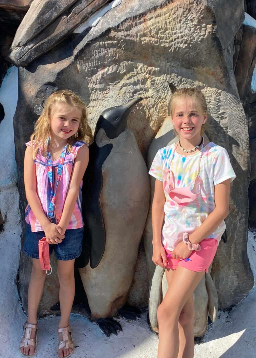 tips for visiting SeaWorld Orlando