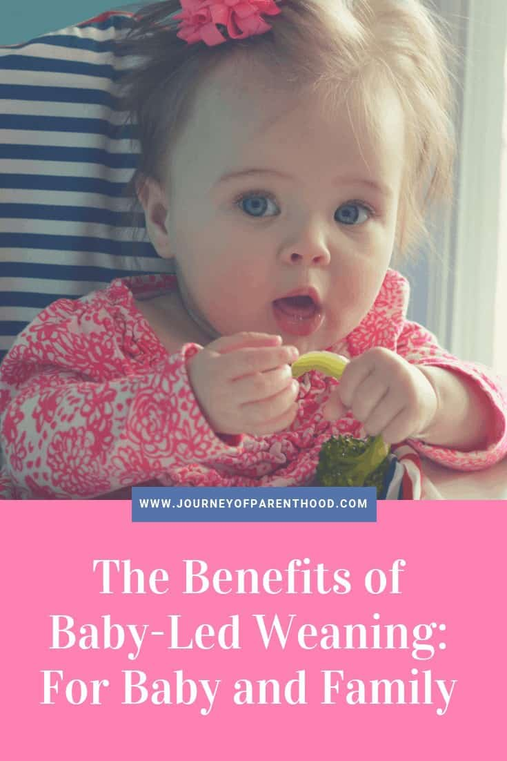 benefits of baby led weaning for baby and family introducing solids to baby