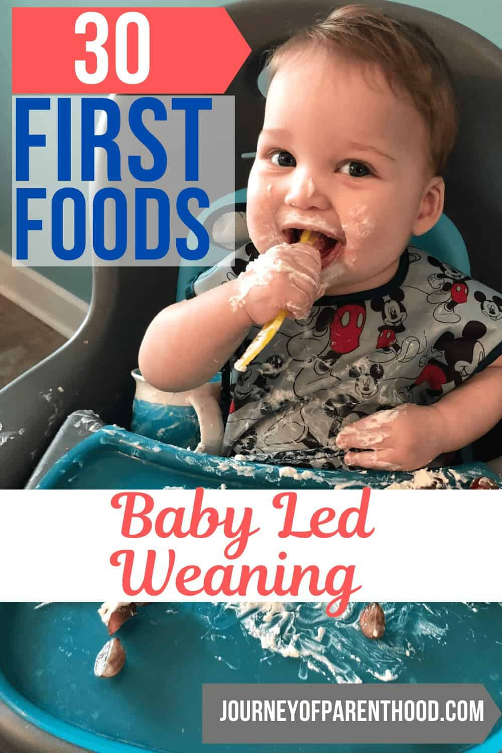 30 first foods with baby led weaning