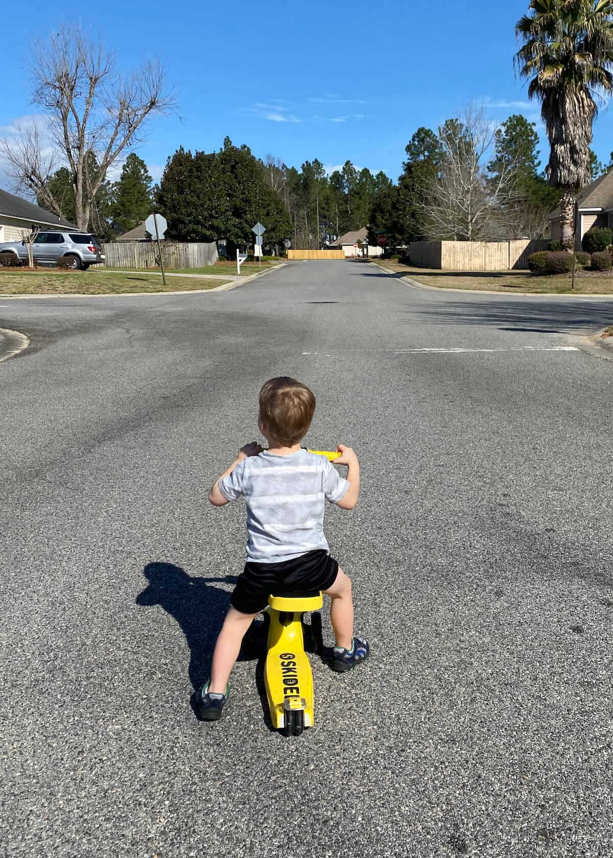 the best scooter for toddler